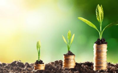 Crescimento sustentável requer produtividade no trabalho